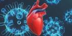 Нарушения сердечного ритма в период пандемии COVID-19